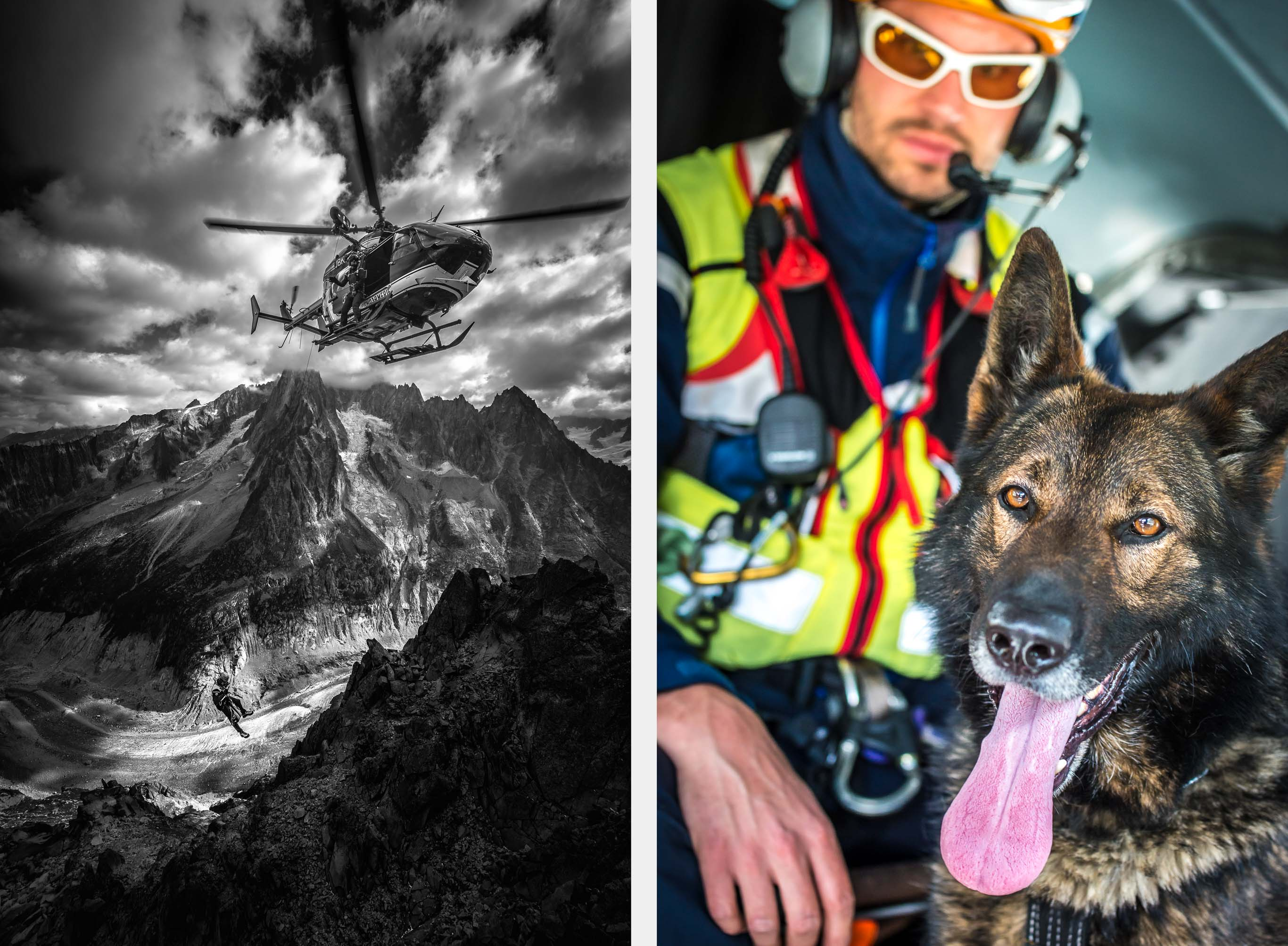 Winch | Avalanche Dog